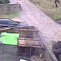 Bari, maxi operazione contro gli assalti ai tir: recuperata merce rubata