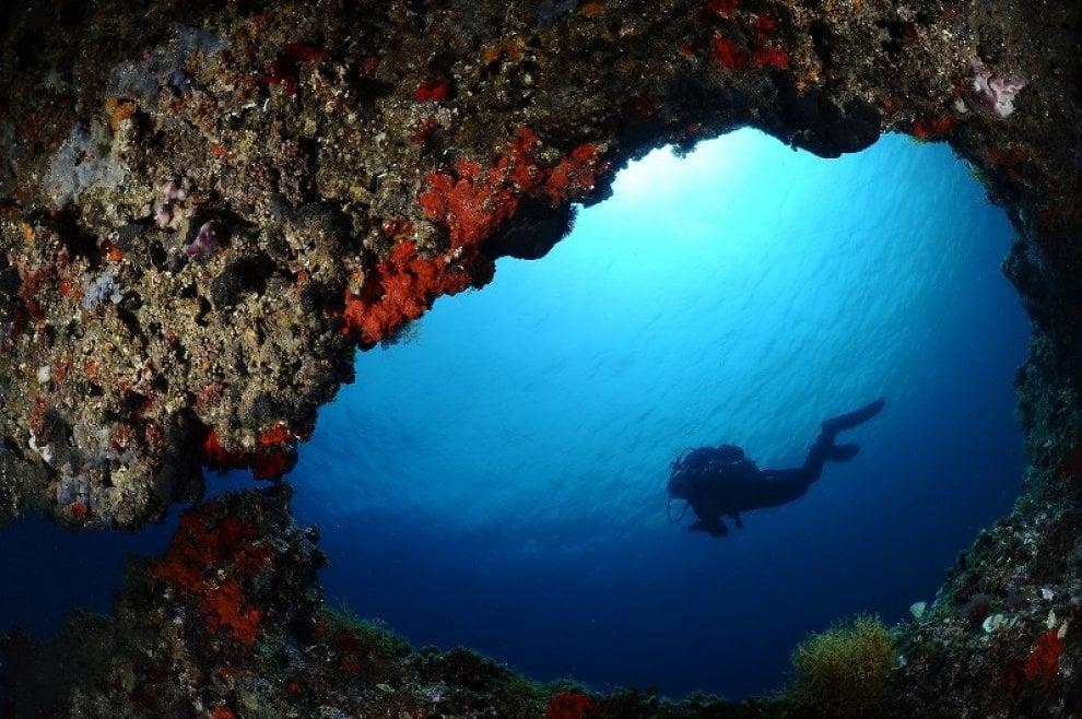 Grotte, coralli e relitti: i segreti nel mare del Salento