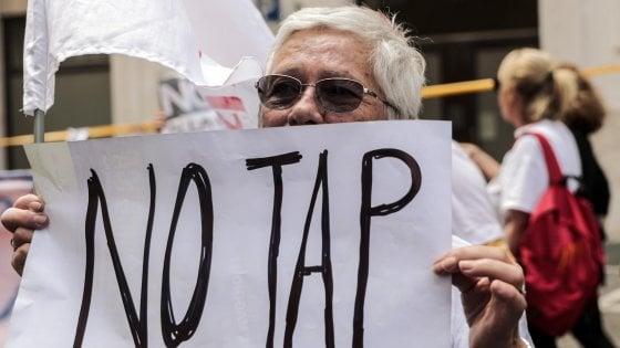 Gasdotto, blitz notturno di Tap per spostare 11 ulivi: tensione tra manifestanti e polizia