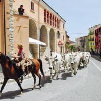 Trasumanza, la magia del rito dalla Puglia al Molise