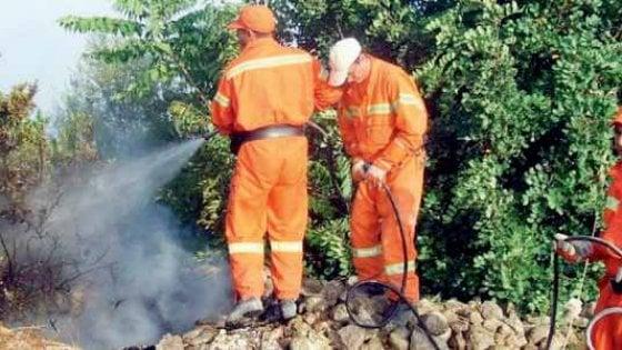 Puglia, il pozzo senza fondo dei forestali: 1.200 assunti e 16 milioni di perdite all'anno