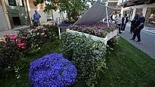 In via Argiro fioriscono i giardini da favola