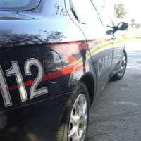 Bari, in casa la serra per coltivare marijuana: arrestato spacciatore 33enne
