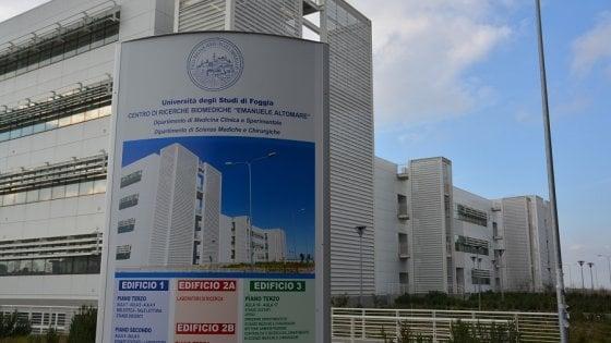 Università, a Foggia c'è Scienze biomolecolari con lezioni all'estero. E Bari laurea gli atleti big