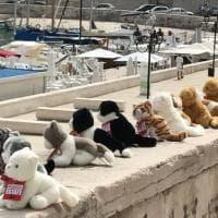 Troppi topi in città: Bisceglie schiera i gatti di peluche
