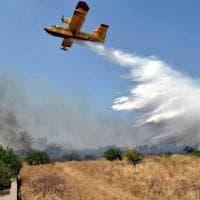 Bari, fiamme a Lama Balice: in azione il Canadair