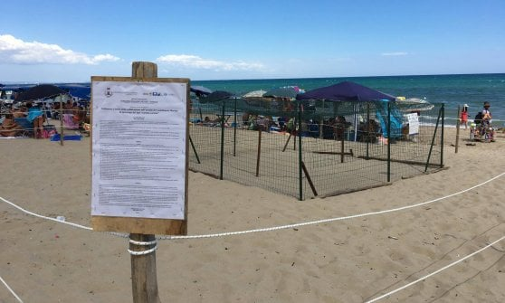 Taranto, vietato fare rumore: ci sono 86 uova di tartaruga. Ma i bagnanti piantano lì le tende