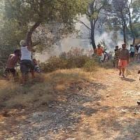 Incendio alle Isole Tremiti, 20 evacuati: turisti e residenti si mobilitano per salvare il bosco