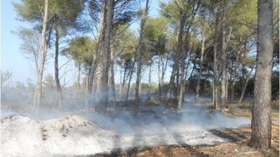 Lecce, cerca di appiccare il fuoco in un bosco: 68enne denunciato per tentato incendio