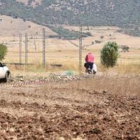 Foggia, 4 morti nell'agguato: inutile la fuga nei campi