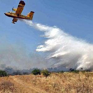 Bari, incendio doloso nel bosco Difesa Grande a Gravina: cinque anni fa un altro rogo
