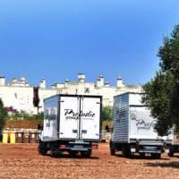 Triglie, carciofi e mele fritte: in Puglia un menu di ispirazione kosher per le nozze...