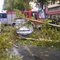 Vento forte su Bari, auto centrata in pieno da un albero: illesi la conducente