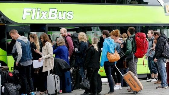 Puglia, l'effetto Flixbus fa convertire i pullman al low cost: è record di corse e passeggeri