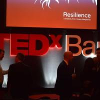 TEDx Bari, al Petruzzelli si parla di 'disordine': Mahzarin R. Banaji e i Niagara fra i protagonisti