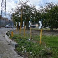 Bari, nessuno ha raccolto l'appello del Comune per adottare le aiuole: