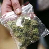 Bari, bimba di 3 anni a scuola con una bustina di marijuana: denunciato il padre
