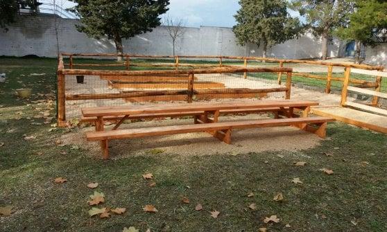 """Gravina in Puglia, genitori e figli adottano il giardino della scuola: """"Ecco l'orto anti vandali"""""""