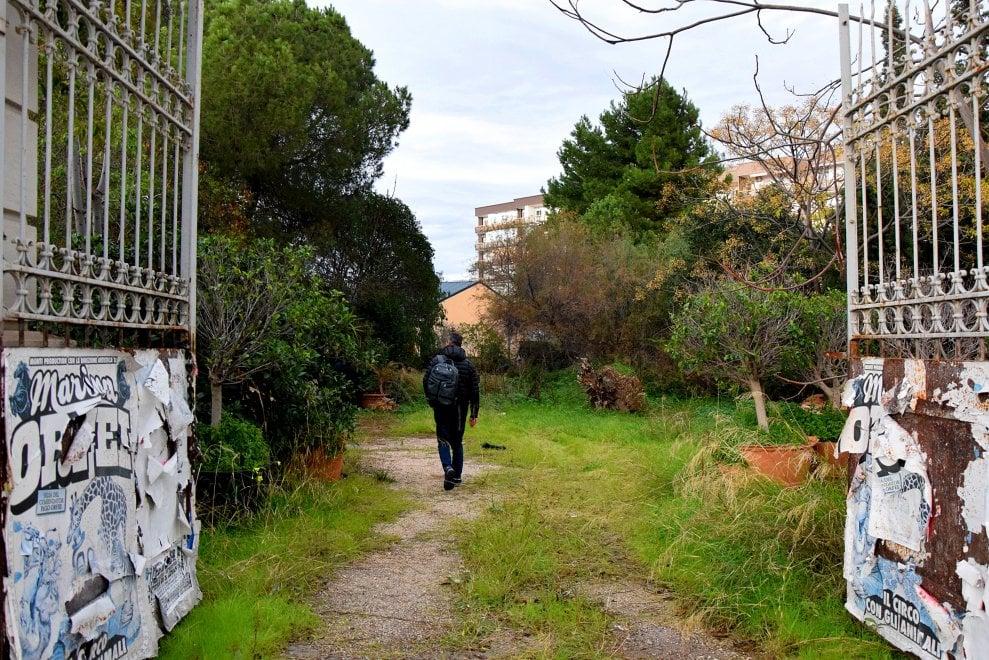 Bari, piante rare e vecchi arnesi: il vivaio abbandonato