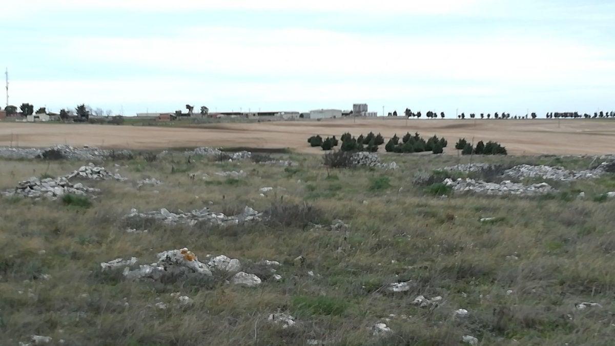 A gravina un sito archeologico sconosciuto la scoperta for Sito la repubblica