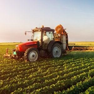 Malattie professionali, in Puglia il record dell'agricoltura: aumentate del 22 per cento