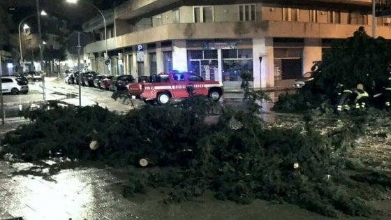 Lecce, tromba d'aria nella notte: alberi abbattuti e divelti gli infissi dell'Ateneo