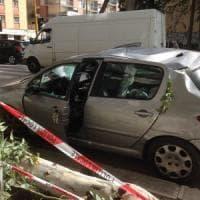 Bari, il vento forte spezza i rami di un albero in viale Salandra: danni a 2 auto, nessun ferito