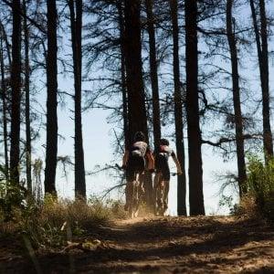 Andria, grave un ciclista 37enne di Alberobello caduto durante una gara di mountain bike