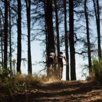 Andria, grave un ciclista 37enne di Alberobello caduto durante una gara