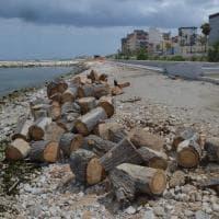 Bari, spiagge sporche e cantieri: il mare è negato