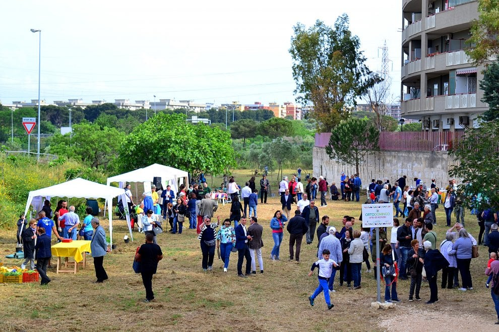 Bari, tra i palazzi di Poggiofranco nasce l'orto urbano di vicinato