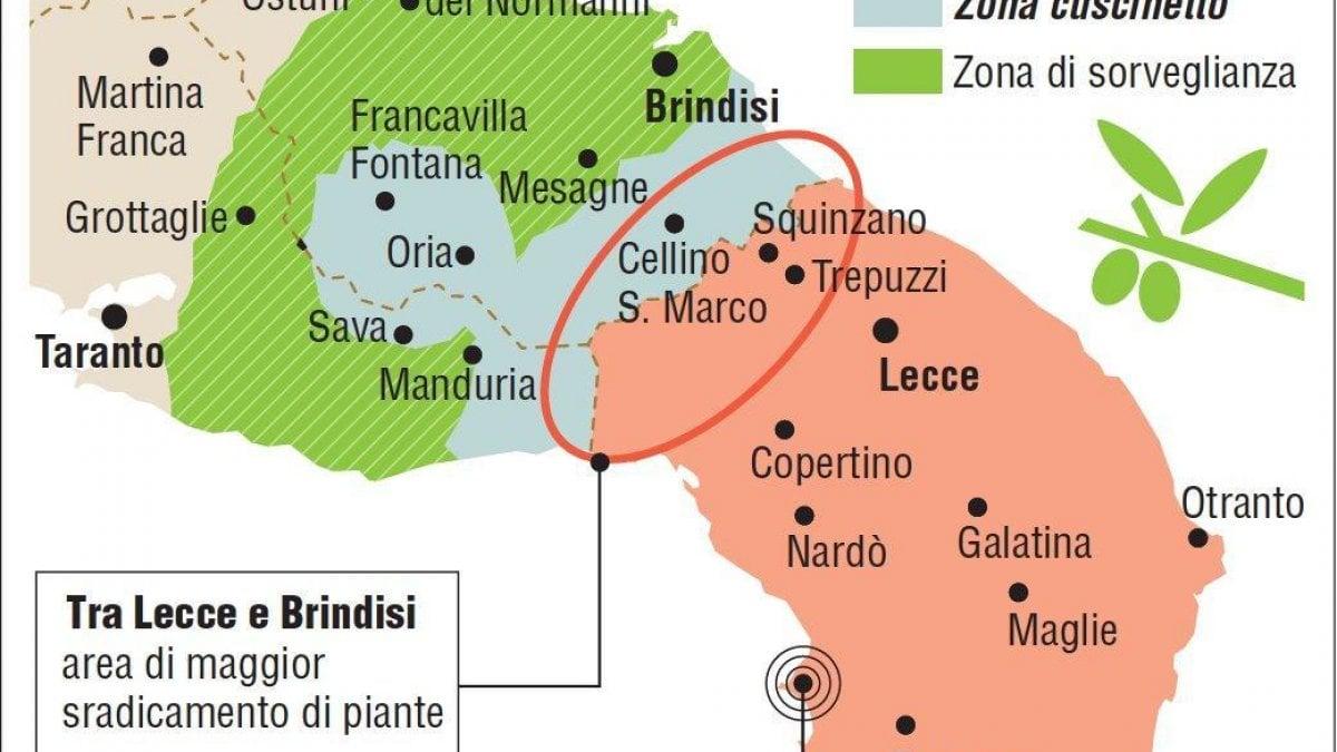 Mappa Xylella Puglia.Xylella A Bari Corteo Contro Il Decreto E Gli Olivicoltori In Procura Esposto Contro Le Bufale La Repubblica