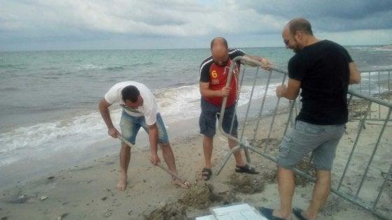 Lecce, la tartaruga nidifica sulla spiaggia: il Comune impone divieto di sosta e transito