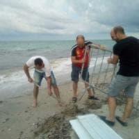 Lecce, la tartaruga nidifica sulla spiaggia: il Comune impone divieto di