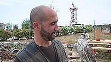 """""""Con i falconi rendiamo più sicuri i vostri voli"""""""