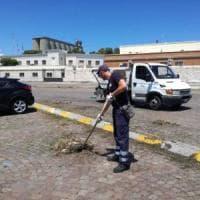 Bari, grandi pulizie nel piazzale davanti al porto dove atterrerà l'elicottero di papa Francesco
