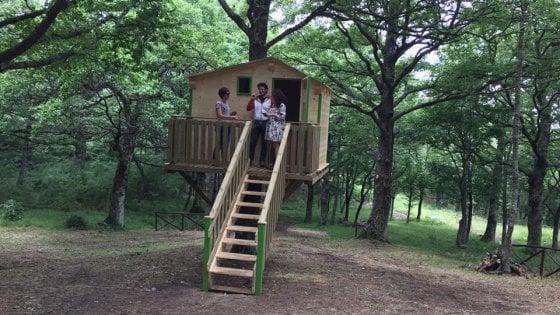 Biccari, nel parco arrivano le casette per la vacanza sugli alberi: ospitano fino a quattro persone