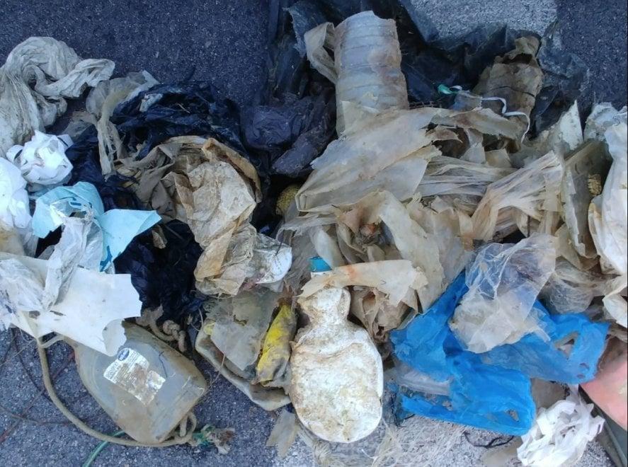 Manfredonia, i pescatori ripuliscono il fondale dalla plastica