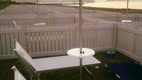 """Bari, a Torre Quetta la spiaggia si apre ai cani: """"30 euro per una giornata di mare insieme a Fido"""""""