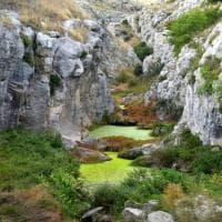 Bari, il mistero del torrente Gravina: l'acqua è diventata verde acido