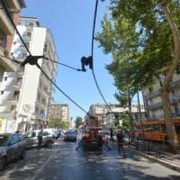 Bari, cedono i cavi del filobus su viale della Repubblica: stop alle auto, traffico in tilt