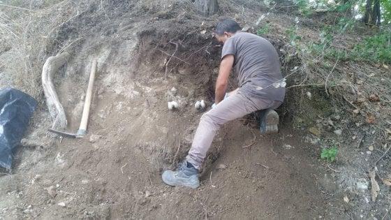 Foggia, ritrovati resti umani nelle campagne di Ascoli Satriano