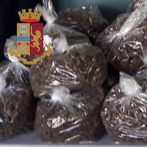 Bari, operazione antidroga: sequestrate 35mila dosi di marijuana destinate allo spaccio