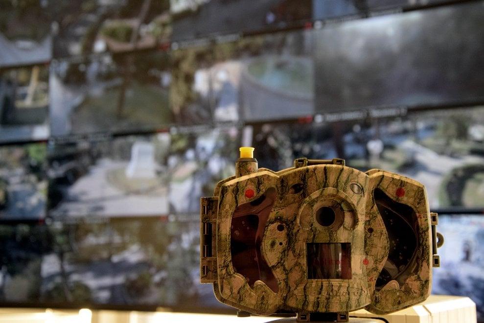 Bari, ecco le super fotocamere mimetiche per stanare i vandali