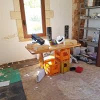 Al Bano, furto di vini nella tenuta: i ladri portano via 90 casse di bottiglie
