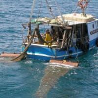 Termina il fermo biologico: via libera alla pesca in tutta la Puglia adriatica dopo 40 giorni
