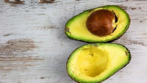 """Xylella, mango e avocado al posto degli ulivi infetti: """"La svolta tropical può salvare il Salento"""""""