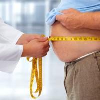 """""""Un ormone prodotto dai muscoli spegne la fame"""": scoperta anti-obesità dell'Ateneo di Bari"""