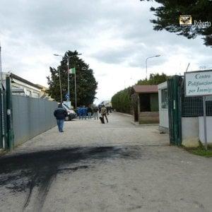 Migrante irrompe nel Cara Foggia e aggredisce il direttore: arrestato