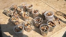 Bari, 3mila chewing gum e 57 bicchieri di sigarette raccolti in 10 minuti da piazza Battisti
